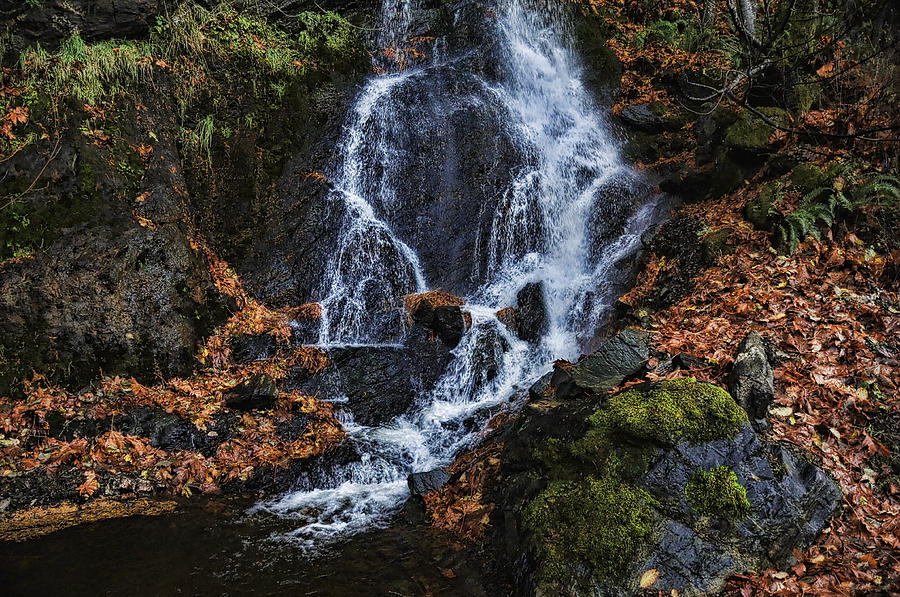 Waterfall Photograph - Waterfall by Lawrence Christopher