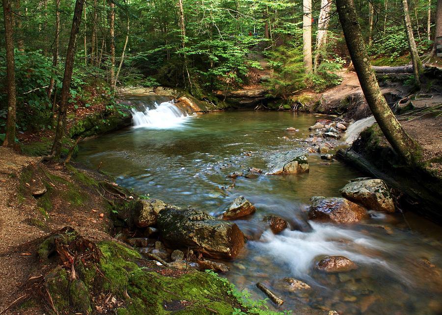 Waterfall Photograph - Waterfalls At The Basin by David Gilman