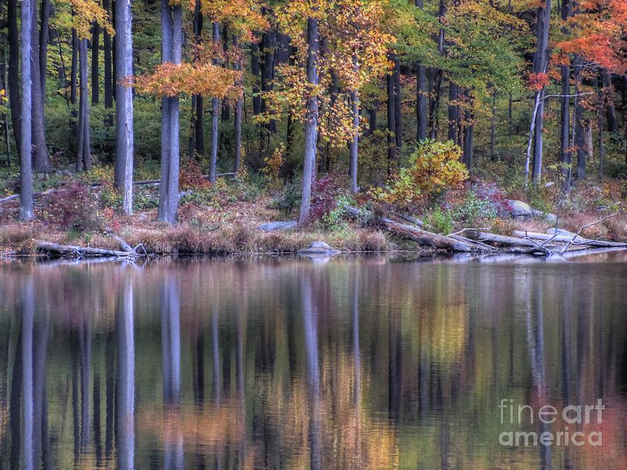 Landscape Photograph - Waters Edge by Craig Holquist