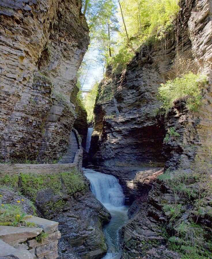 Spring Photograph - Watkins Glen Spring One by Joshua House