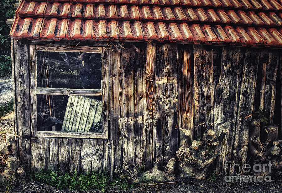 Photo Photograph - Wayside by Jutta Maria Pusl