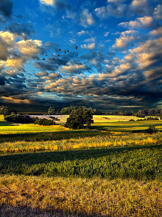 Horizons Photograph - Wayside by Phil Koch