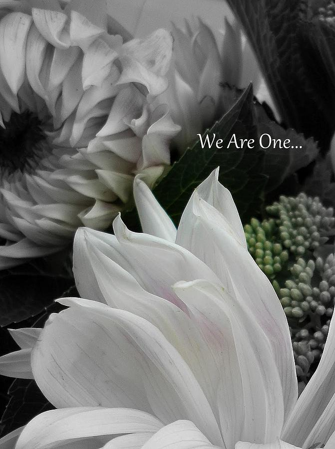 We Are One Photograph - We Are One by Sian Lindemann