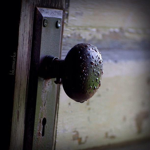 Yolo Photograph - Weathered by Matthew Blum