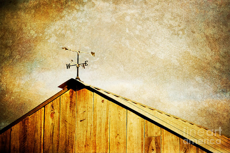 Weathervane Photograph - Weathervane by Joan McCool