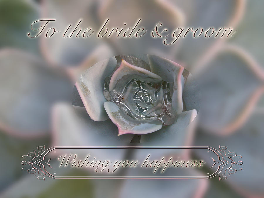 wedding photograph wedding happiness wishes to bride and groom succulent by mother nature