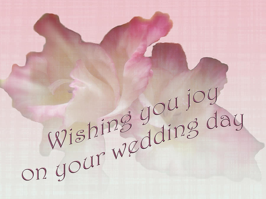 Wedding Wishes Card - Gladioli Photograph by Mother Nature