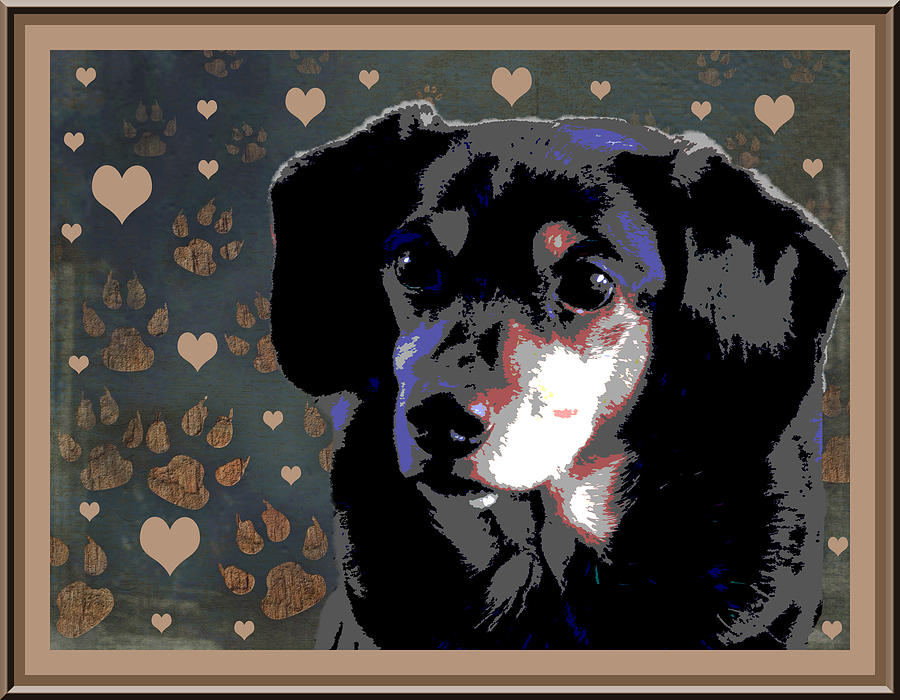 Dachshund Photograph - Wee With Love by One Rude Dawg Orcutt
