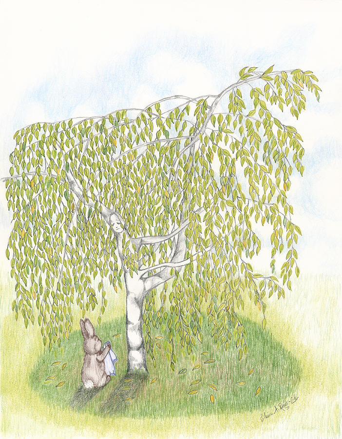 Tree Drawing - Weeping Birch by Elaine Read-Cole
