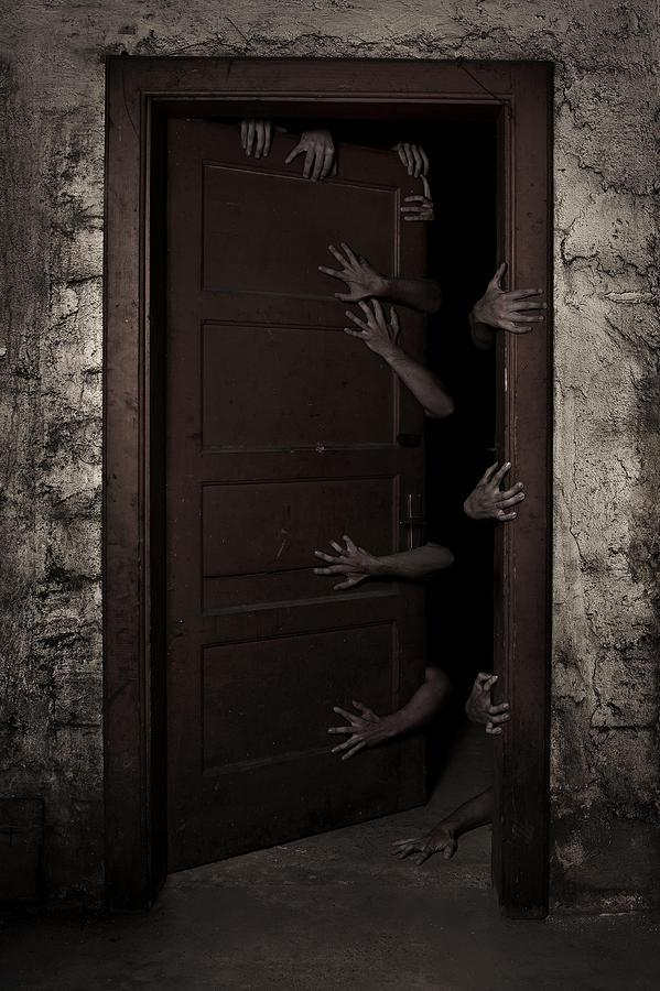 Welcom Photography Photograph - Welcome by Aljaz Bezjak