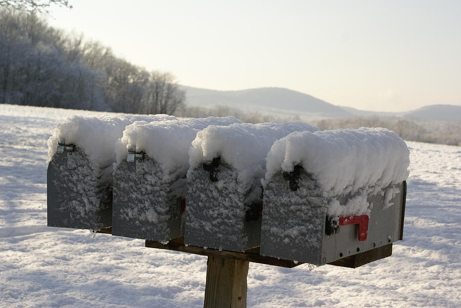Snow Photograph - Welcomed Mail by Margaret Steinmeyer
