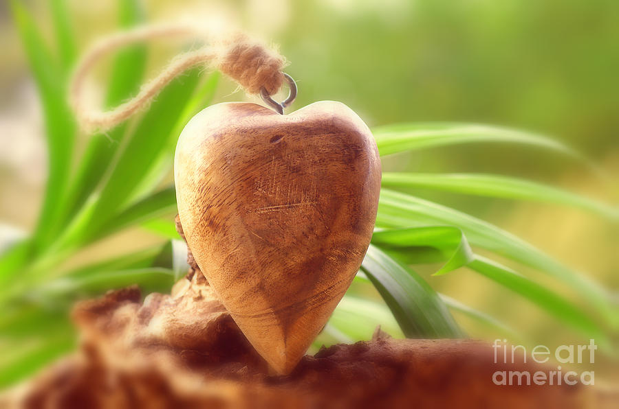 Heart Photograph - Wellnes Heart by Tanja Riedel
