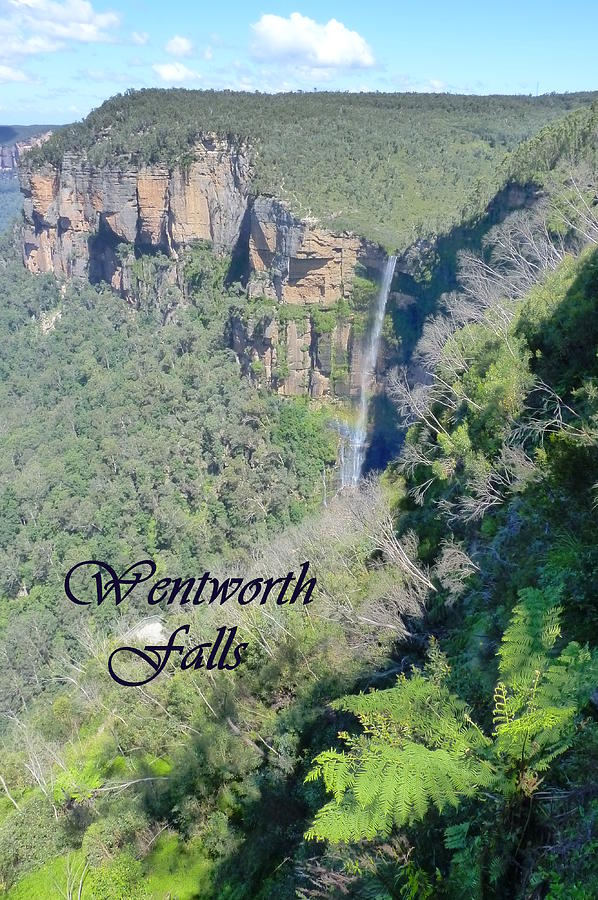 Australia Photograph - Wentworth Falls by Carla Parris