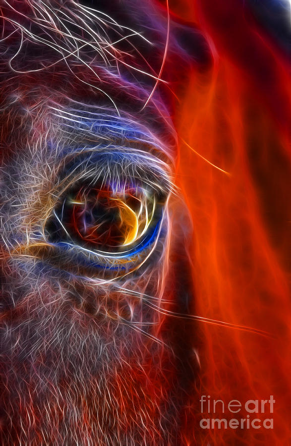What Digital Art - What Are You Looking At Now? by Mariola Bitner