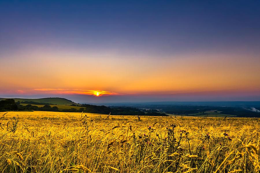 Horizontal Photograph - Wheat Field by Rob Webb