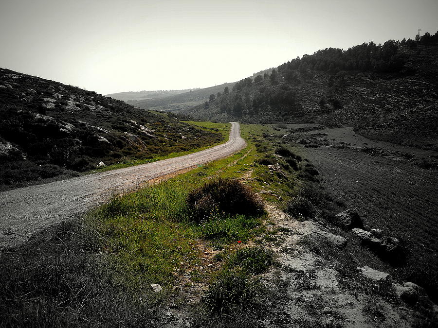 Road Photograph - Where Lovers Passed by Marwan Hasna - Art Beat
