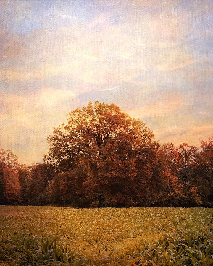 Autumn Photograph - Where Memories Are Made by Jai Johnson