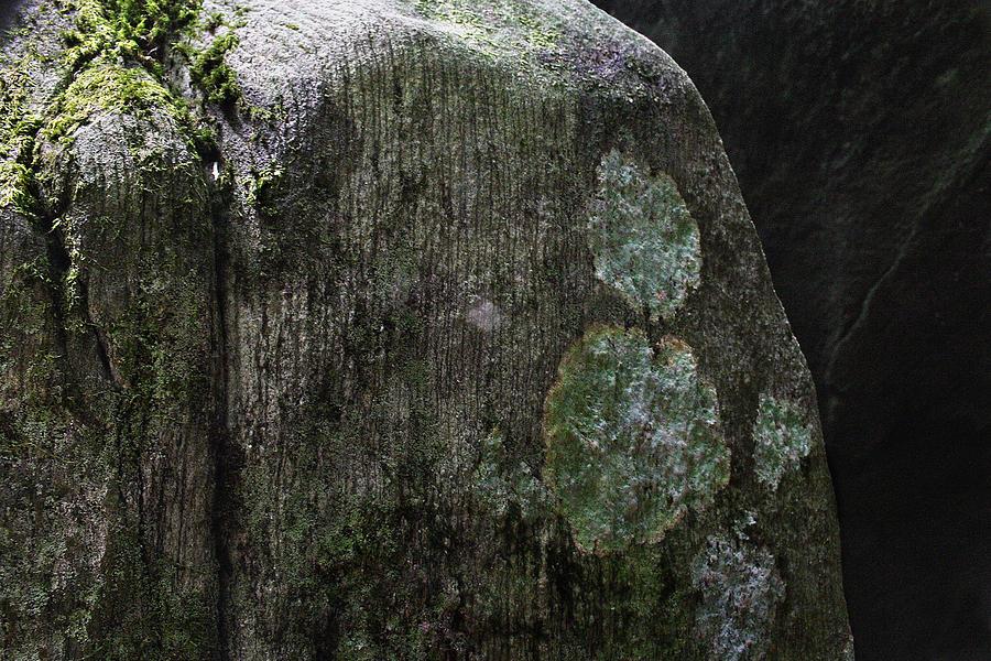 Digital Photo Pyrography - Where The Depths Begin by Bryan Dechter