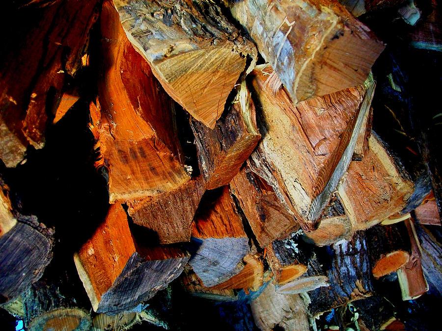 Mesquite Photograph - Wheres The Brisket by Laurette Escobar