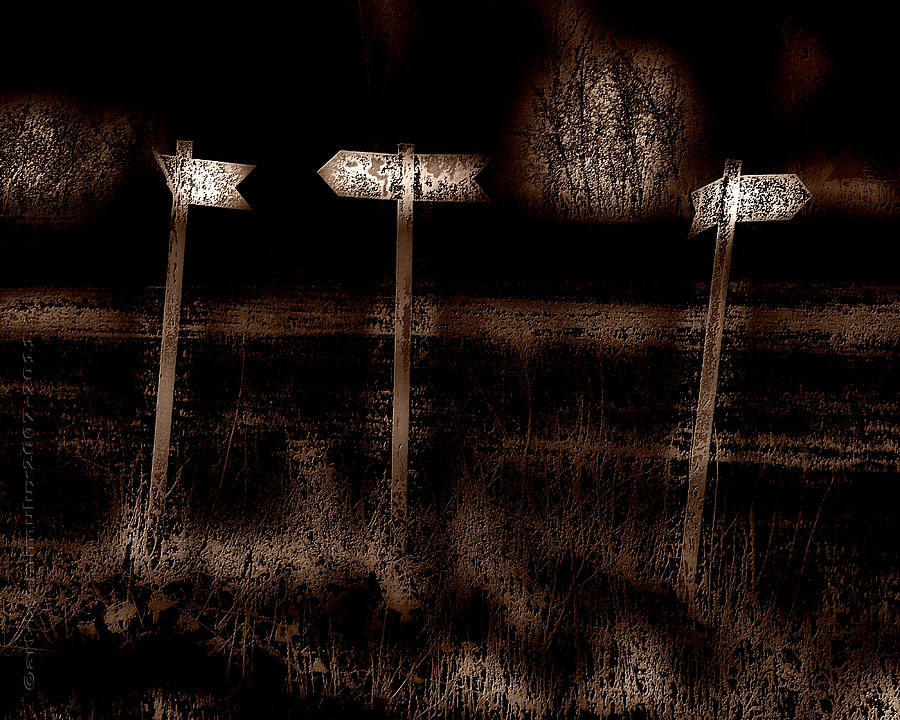 Confusion Photograph - Which Way by Mimulux patricia No