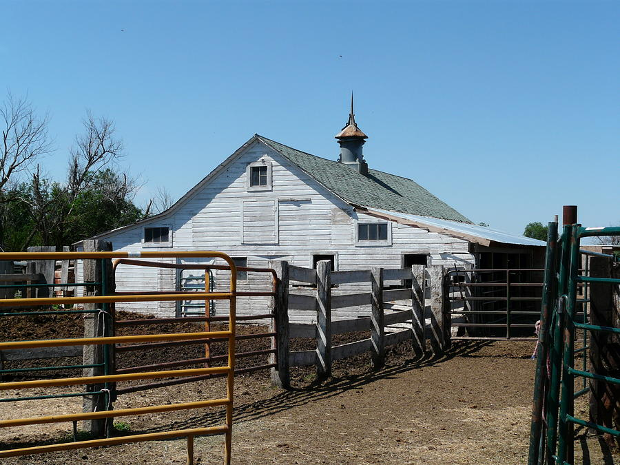 White Photograph - White Barn  And Corrals by Bobbylee Farrier