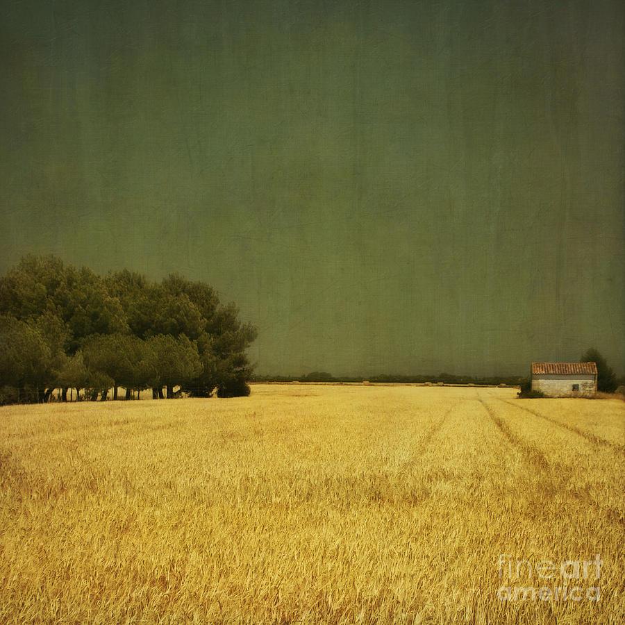 White Photograph - White Barn by Paul Grand
