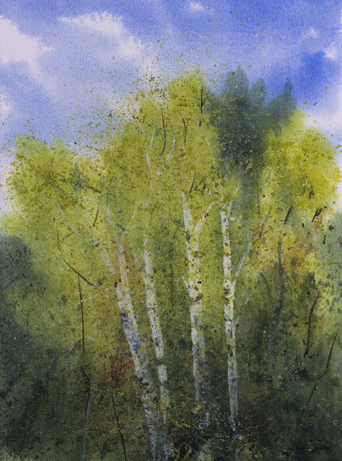 White Birch Trees Painting By Debbie Homewood