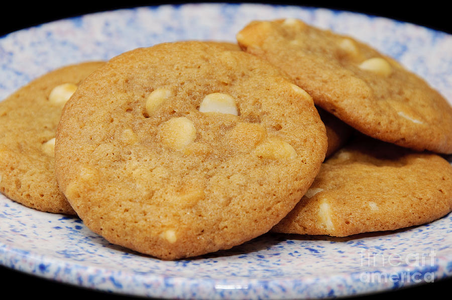White Chocolate Photograph - White Chocolate Chip Cookies by Andee Design