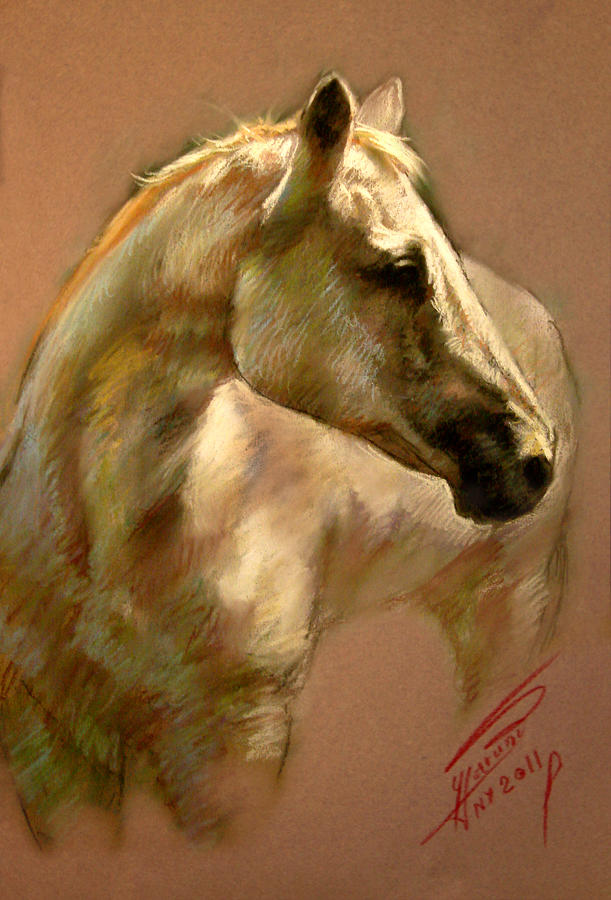 White Horse Pastel - White Horse by Ylli Haruni