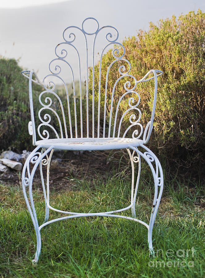 white metal garden chair photograph by noam armonn