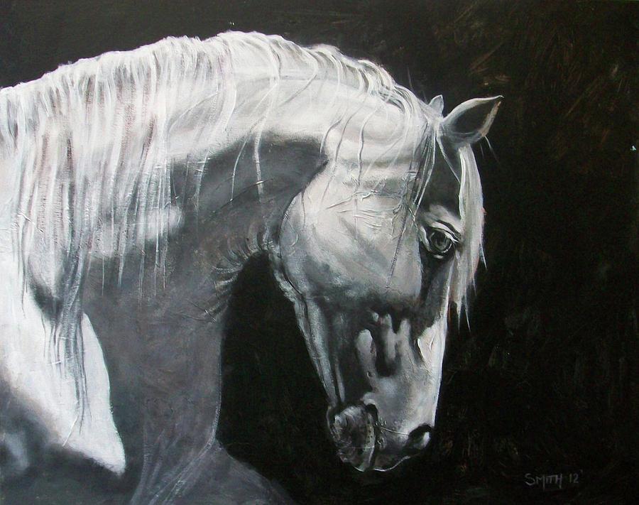 Black horse face close up - photo#35