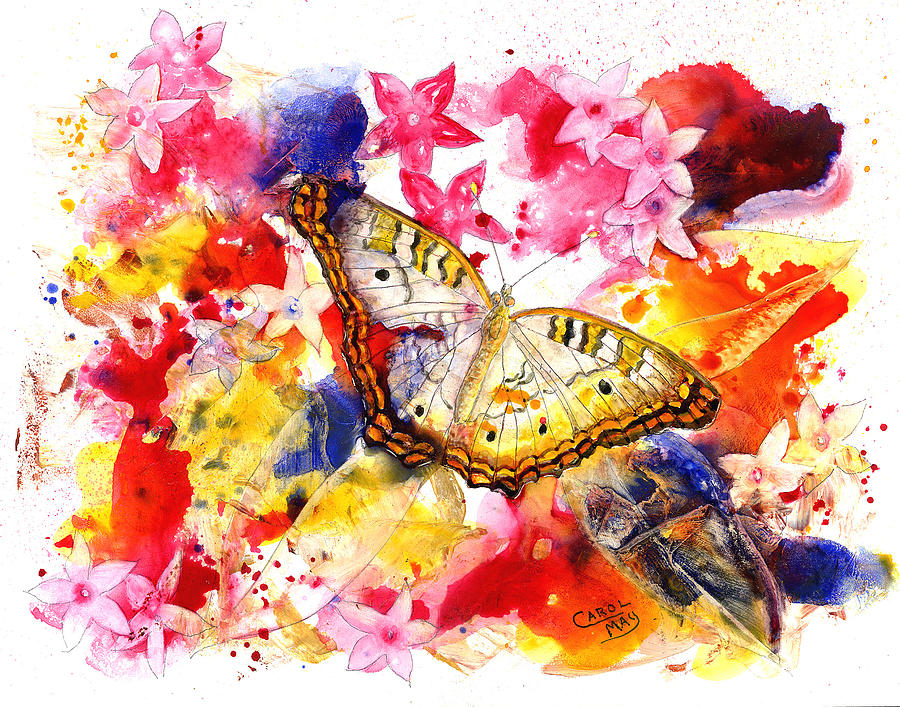 Flower Painting - White Peacock Butterfly With Pentas by Art by Carol May