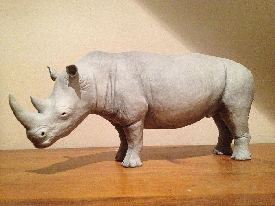 African Sculpture - White Rhino by Megan Laura