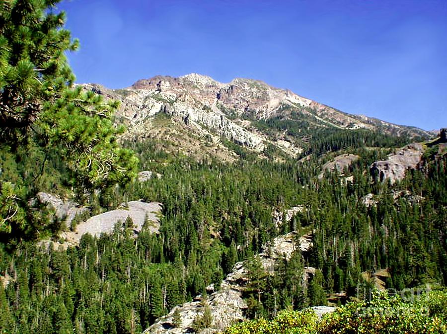 White Rock Mountain Photograph - White Rock Mountain by The Kepharts