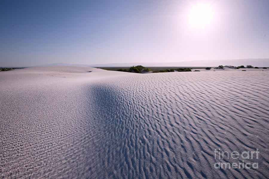 White Sands Photograph - White Sands at Dawn by Matt Tilghman