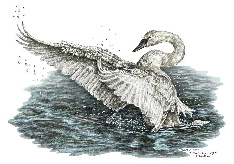 White Swan - Dreams Take Flight-tinted by Kelli Swan