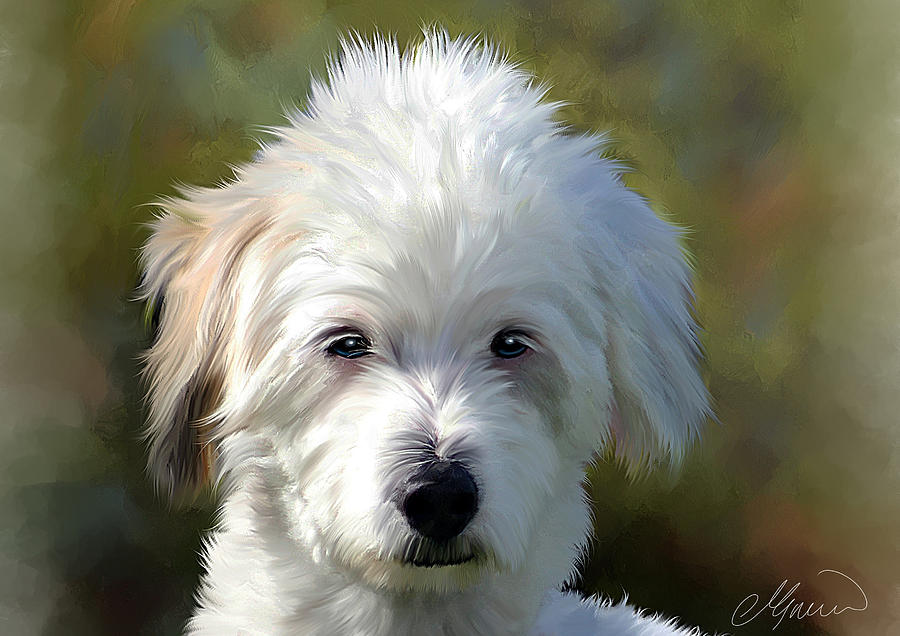 White terrier dog portrait painting by michael greenaway for Painting of your dog