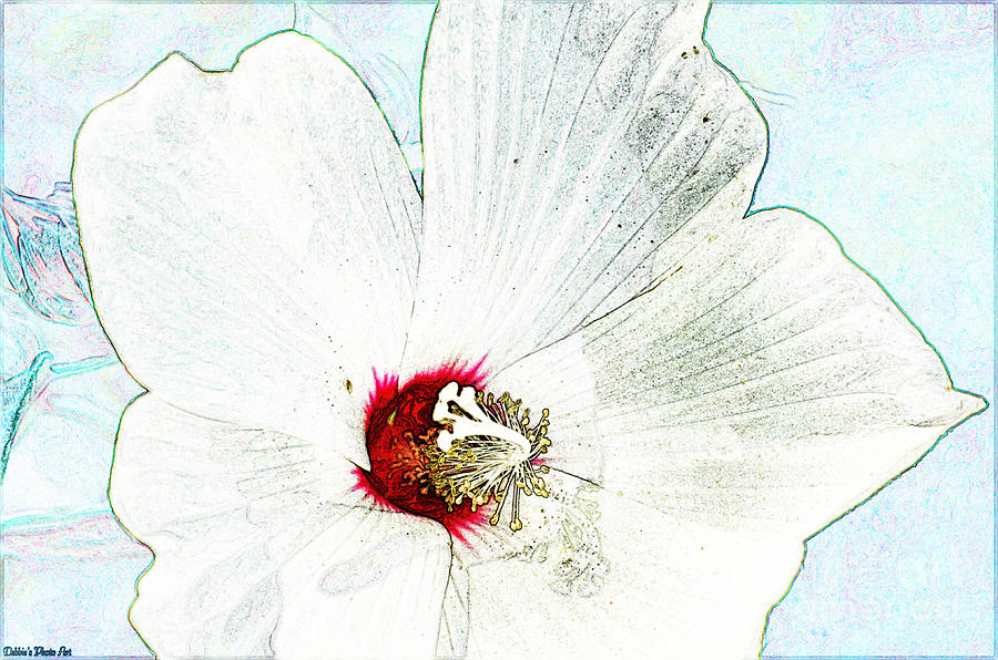 Botanical Photograph - White Wildflower V by Debbie Portwood