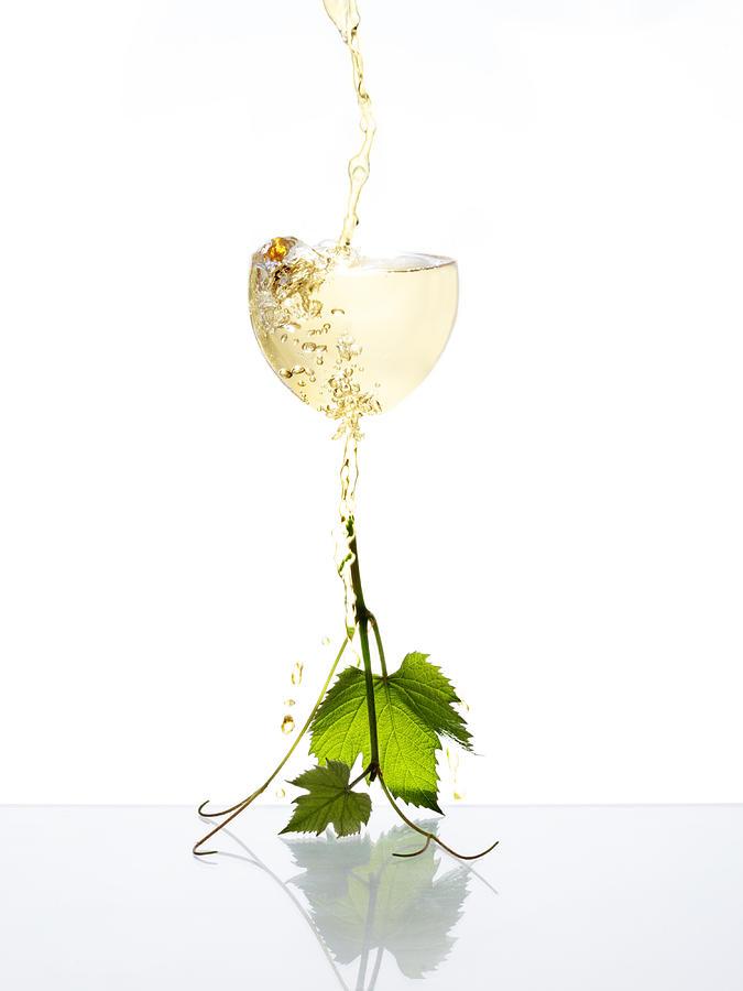Wine Photograph - White Wine by Floriana Barbu