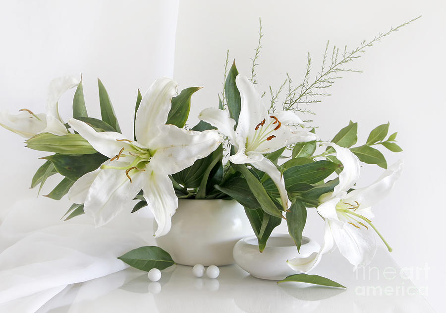 Flower Photograph - Whites Lilies by Matild Balogh