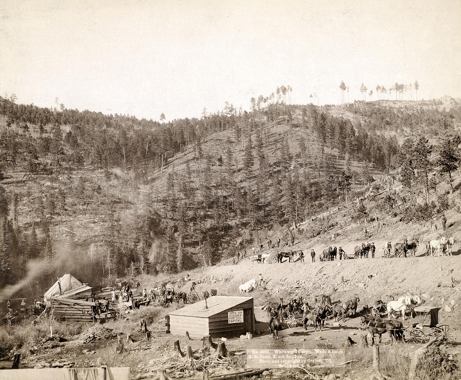 1880s Photograph - Whitewood Canyon, Wade And Jones R.r by Everett