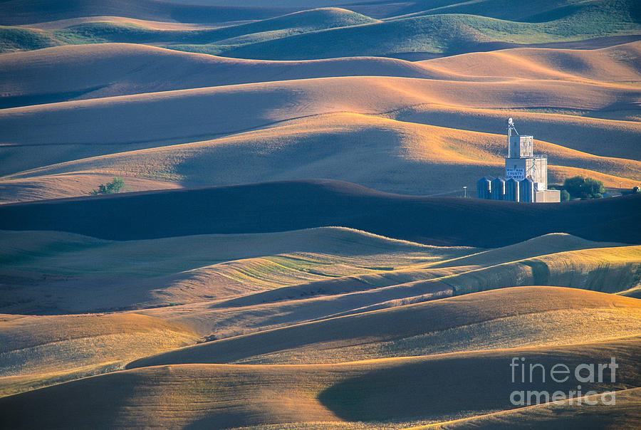 Palouse Photograph - Whitman County Grain Silo by Sandra Bronstein