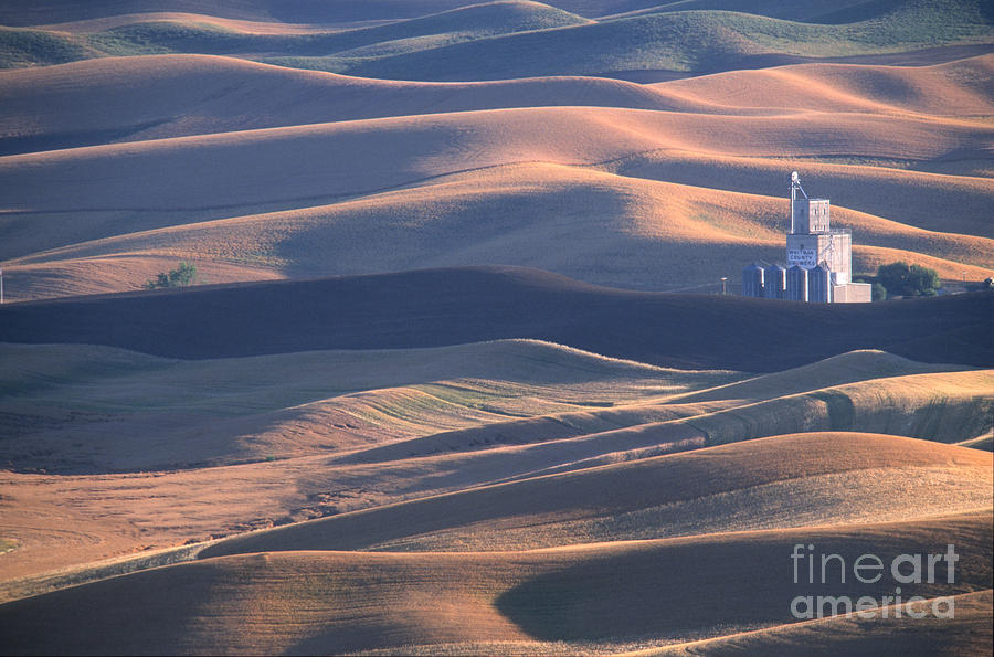 Palouse Photograph - Whitman County Granary At Sunset by Sandra Bronstein