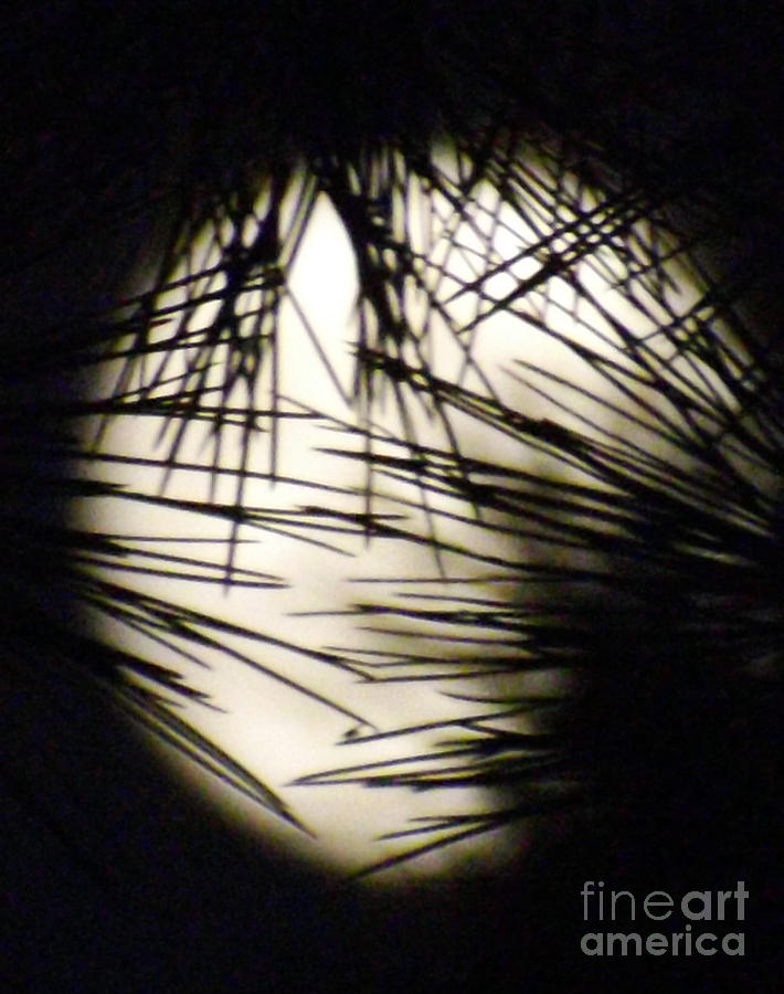 Moon Photograph - Wicked Moon by Gary Brandes
