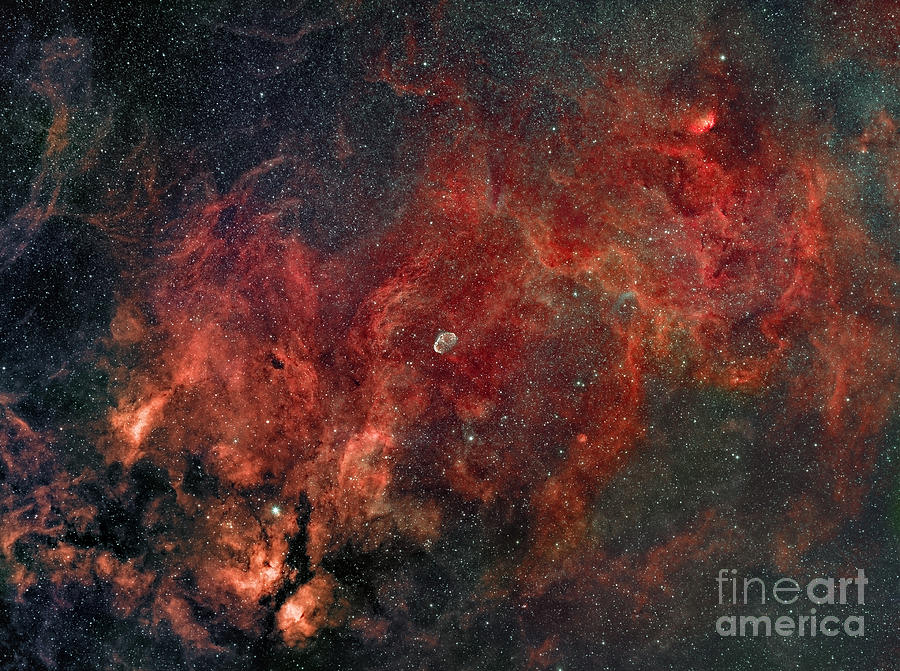 Constellation Photograph - Widefield View Of He Crescent Nebula by Rolf Geissinger