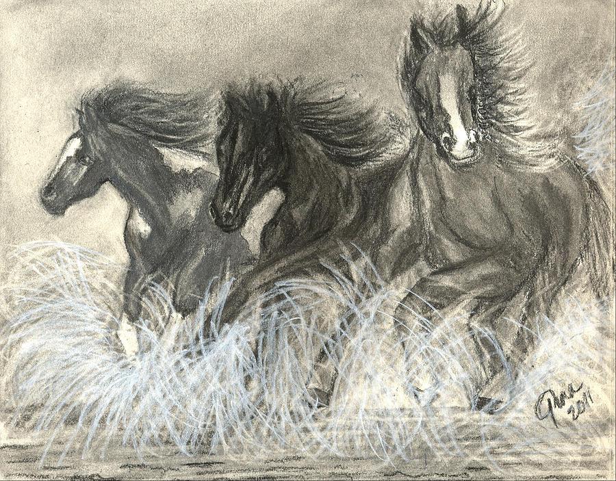 Wild Horses Drawing - Wild Horses Run by Gina Cordova