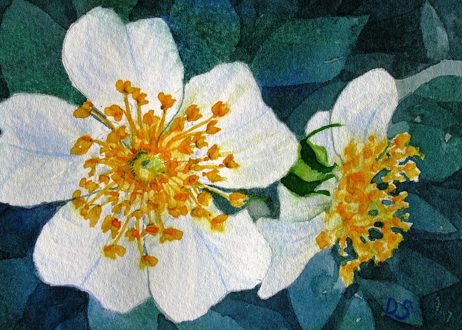 Wild Rose Painting - Wild Roses by Debra Spinks