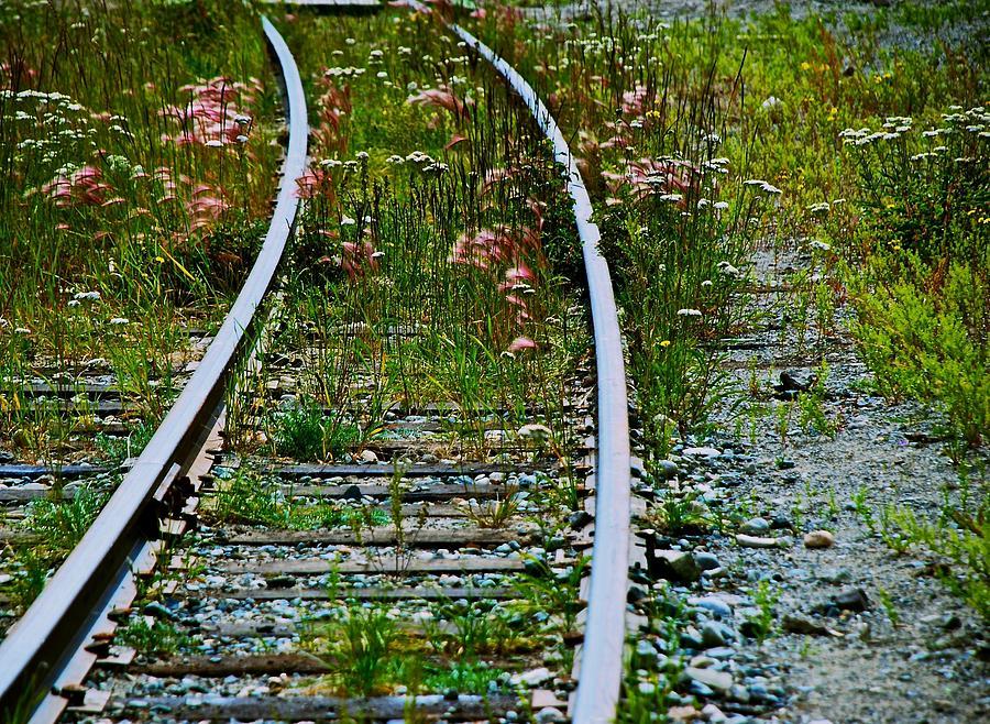 Railroad Photograph - Wildflower Railroad by Eric Tressler