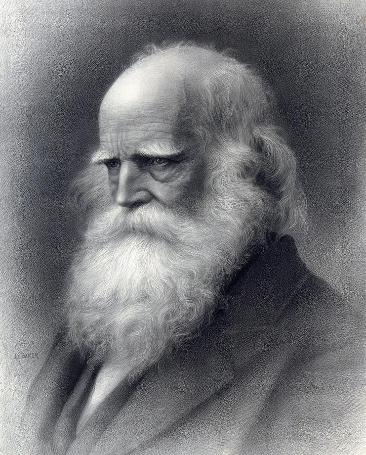 Historical Photograph - William Cullen Bryant 1794-1878 Was An by Everett