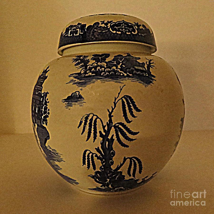 Jar Photograph - Willow Tea Jar by Patricia Januszkiewicz